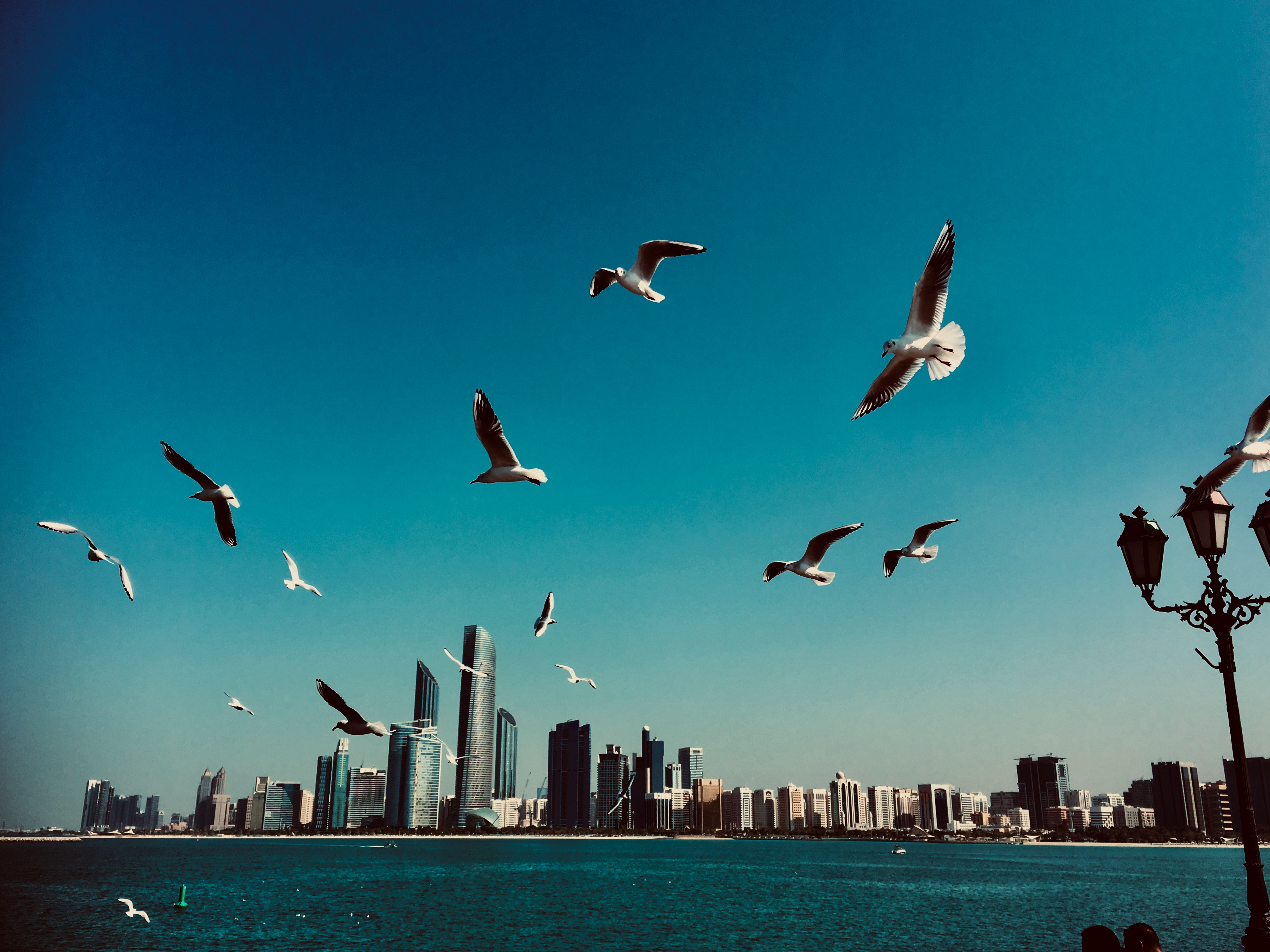 UAE ranked happiest country in the Arab Region