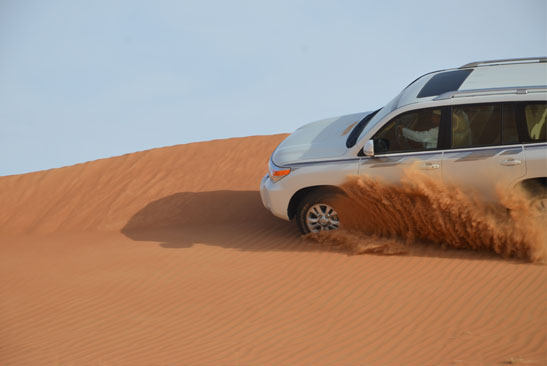 Desert Safari from Capital Gate Tourism