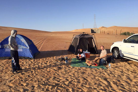 Liwa Safari from Capital Gate Tourism