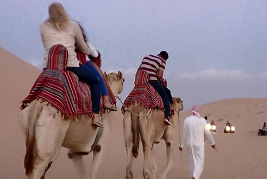 Camel Safari from Capital Gate Tourism